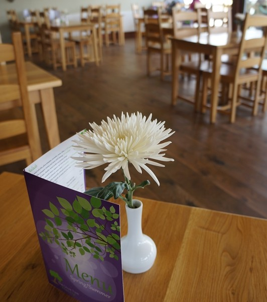 The Olive tree bistro cafe Holmfirth