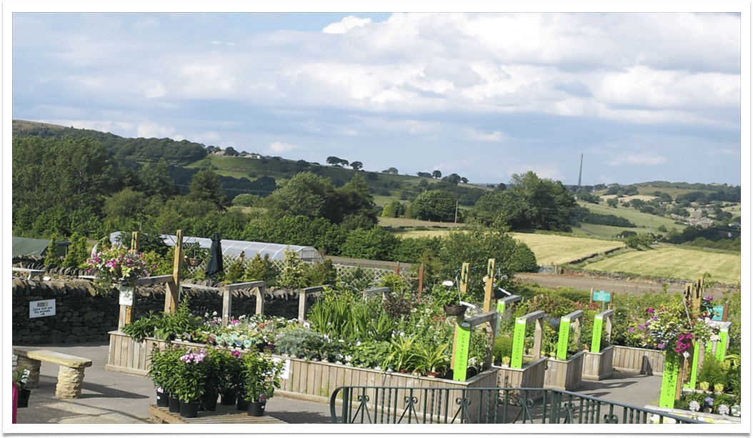 Garden-Centre-view-v3